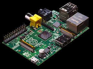 The Raspberry Pi board itself.